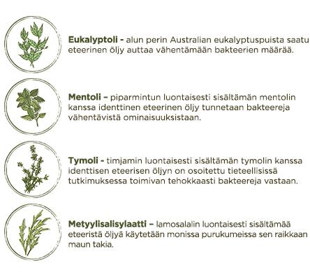 Listerinen vaikuttavat aineet & eteeriset öljyt - LISTERINE® suuvesi